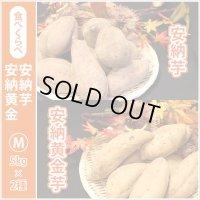 安納芋と安納黄金(こがね)食べ比べ2箱セット Mサイズ  今シーズンの販売は終了いたしました。誠にありがとうございました。