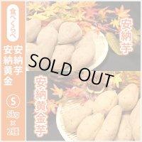 安納芋と安納黄金(こがね)食べ比べ2箱セット Sサイズ  通常5,200円がキャンペーン特価!
