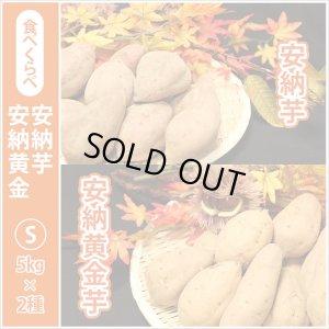 画像1: 安納芋と安納黄金(こがね)食べ比べ2箱セット Sサイズ 今シーズンの販売は終了いたしました。誠にありがとうございました。