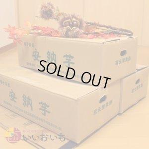 画像3: 安納黄金 Sサイズ(3箱セット)  今シーズンの販売は終了いたしました。誠にありがとうございました。