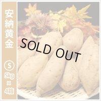 安納黄金 Sサイズ(4箱セット)  通常10,000円がキャンペーン特価!