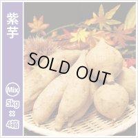 紫芋 S〜Lサイズミックス(4箱セット) 今シーズンの販売は終了いたしました。誠にありがとうございました。