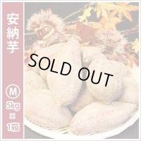 安納芋 Mサイズ  通常2,800円がキャンペーン特価!