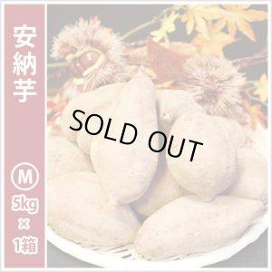 画像1: 安納芋 Mサイズ  通常2,800円がキャンペーン特価!
