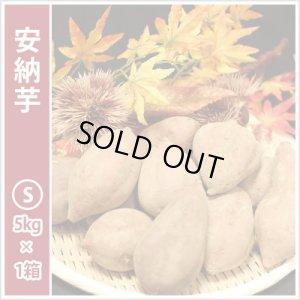 画像1: 安納芋 Sサイズ  通常2,600円がキャンペーン特価!