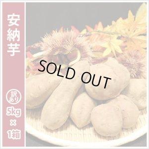 画像1: 訳あり安納芋  今シーズンの販売は終了いたしました。誠にありがとうございました。